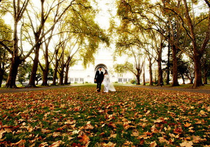 Wedding Themes For Every Season: When Do You Want to Tie the ... | Weddingzidea | Tie The Knot | Scoop.it