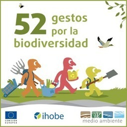 BOSQUES Eco-nomía verde | Planeta Tierra | Scoop.it