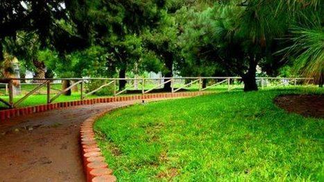 Caminar en lugares de color verde relaja la mente - Uniradio Informa   Ecología Urbana   Scoop.it