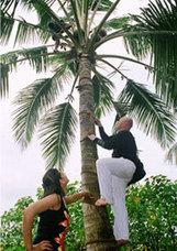 Golden Triangle and Kerala Tour   kerala holidays India   Scoop.it