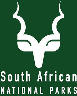 SANparks, traffic officials in rhino case - News24 | Rhino links | Scoop.it
