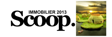 [Dossier] Construction : acquérir un terrain en diffus ou isolé | IMMOBILIER 2013 | Scoop.it
