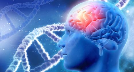 La revolución de las neurociencias: el futuro de la psicoterapia | ENTORNOS VIRTUALES DE APRENDIZAJE | Scoop.it