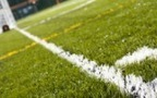 Are artificial sports pitches causing cancer? | Cancer - Advances, Knowledge, Integrative & Holistic Treatments | Scoop.it