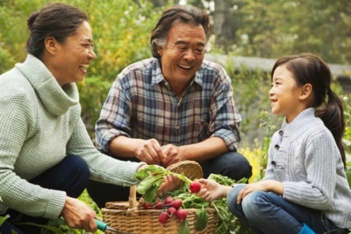 Plan for Safe Spring Gardening | Chiropractic + Wellness | Scoop.it