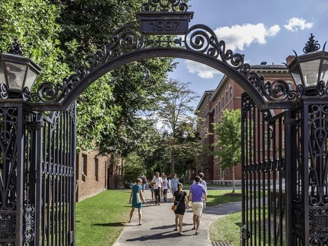 A former Harvard admissions interviewer shares the 4 skills everyone should have by age 18 | Future Content Library | Scoop.it