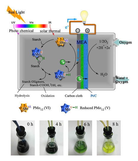New Type of Fuel Cell Produces Electricity Directly from Biomass | NtrFuture | Scoop.it