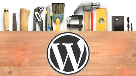 ¿Sirve WordPress para hacer cualquier web? | Técnicas de Growth Hacking: | Scoop.it