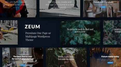 Zeum - One Page and Multipurpose Wordpress Theme | wp theme | Scoop.it