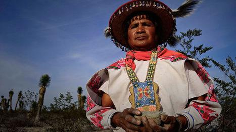 Huicholes: Los ultimos guardianes del peyote | Arte huichol y su influencia en la economía | Scoop.it