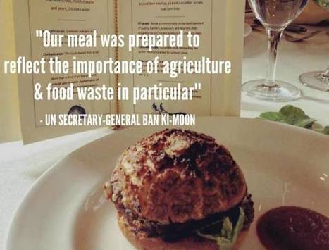 World leaders fed lunch made of 'trash' at UN | Vertical Farm - Food Factory | Scoop.it