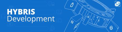Hybris Development Company, Hire Hybris Developer | Web Development & eCommerce Solutions | Scoop.it