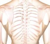 En Auscultation Quiz | Breathing Matters | Scoop.it