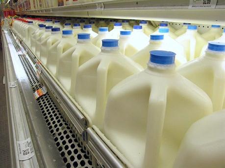 La face cachée de l'industrie laitière : un coût de 7,1 milliards d'euros pour la société   AgroSup Dijon Veille Scientifique AgroAlimentaire - Agronomie   Scoop.it