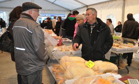 Novembre annonce la saison du gras à Périgueux | Agriculture Aquitaine | Scoop.it
