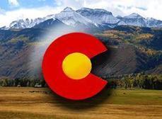 Bear Captured, Euthanized In Colorado Springs - KKTV 11 News   SEO Colorado springs   Scoop.it