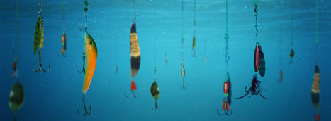 Why Phishing Threats Are Here to Stay - Blog - Global Learning Systems | Data Security | Scoop.it