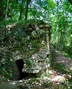 Verdun, forêt d'exception - Balades Historiques | tourisme historique | Scoop.it