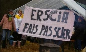 Un coup dur pour Erscia | Notre Dame Des Bois | Scoop.it