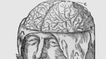 How Our Brains Build Our Autobiographies | Antonio Damasio | The Power of Stories: The Institute for Narrative Research | Scoop.it