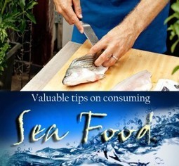 Kompass India Blog » Valuable tips on consuming sea foods   Leisure, entertainment, hospitality in India   Scoop.it