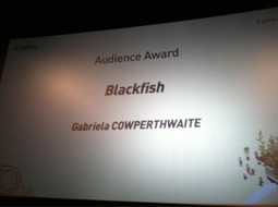 Dogwoof Sales | Blackfish wins the Audience Award at Green Film Festival in Seoul! | Dolphins | Scoop.it