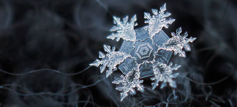 Photographer Tapes a $50 Lens To His P&S Camera To Take Stunning Macro Snowflake Photos | Todo o resto | Scoop.it