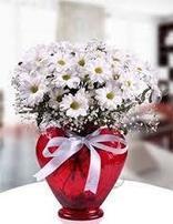 Burça Çiçek Siparişi | Saygın Ilık | Scoop.it