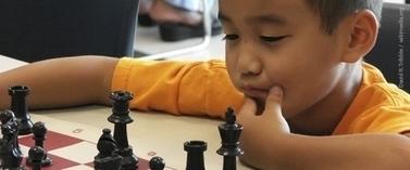 Déjalo Ser - El ajedrez, más que desarrollo de capacidades. Un ejercicio de las Funciones Ejecutivas | Educacion, ecologia y TIC | Scoop.it