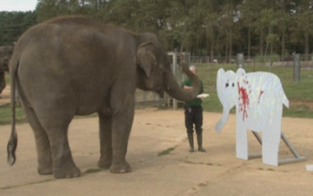Elephant artist paints to raise money for charity - | Strange days indeed... | Scoop.it