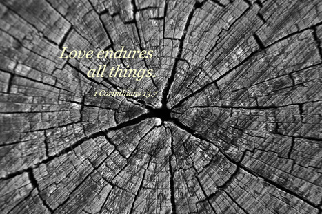 1 Corinthians 13.7 Poster - Love endures all things. | Resources for Catholic Faith Education | Scoop.it