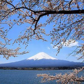 Monte Fuji, el lugar favorito de los suicidas japonese | Interesting Things - A different world | Scoop.it