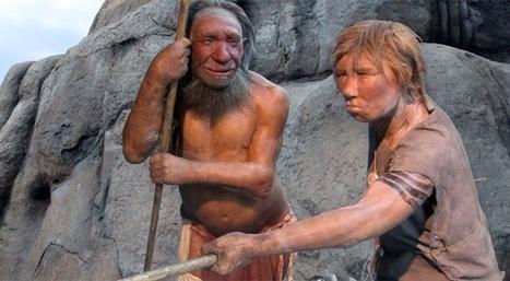 Les espèces d'hominidés étaient aussi diverses que dans le ... - Slate.fr   Evolution de l'Homme   Scoop.it