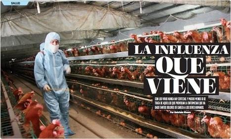 La influenza que viene - Quo | Periodismo Científico | Scoop.it