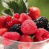 Fruits rouges : des antioxydants contre les radicaux libres   Bio & Terroir du Maroc   Scoop.it