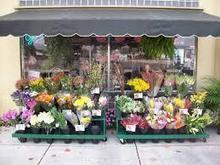 How to Choose a Flower Delivery Shop | Roses of Elizabeth | Scoop.it
