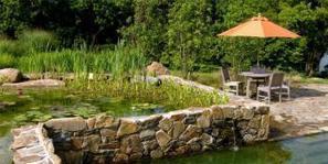 Comment construire sa piscine naturelle : avantages et inconvénients | Construction, entretien piscines | Scoop.it
