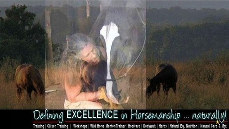 Gwenyth Santagate - Google+ | Holistic Horses from PENZANCE Equine Integrative Solutions | Scoop.it