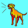 Barking Dog Collar