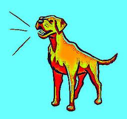 Bark Collar for Small Dog: Bark Collars and Dog Training Efforts   Barking Dog Collar   Scoop.it