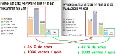 6 Statistiques Ecommerce Décryptées - 2012 - Audit Ecommerce | Projet Ecommerce - Ecom Expert | Scoop.it