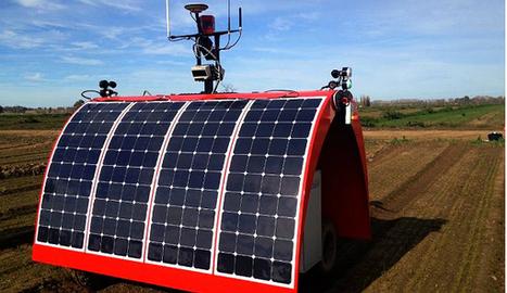 Ladybird : le robot agricole autonome qui optimise les rendements et surveille les cultures | Agro-Media.fr | Actu Boulangerie Patisserie Restauration Traiteur | Scoop.it