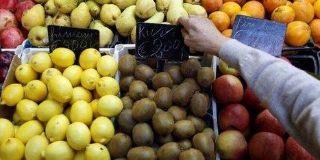 Vente sauvage de fruits et légumes : le ras-le-bol de la filière   Actus en LR   Scoop.it