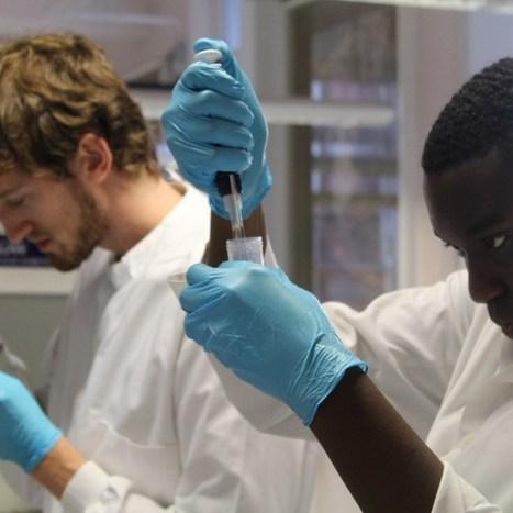 Amateur scientists build Lego-style synthetic BioBricks in public lab   GenoCon 2   Scoop.it