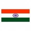 Indian pharmaceutical industry to grow 19% in 2013 | pharmaphorum | Pharmaceutics_R&D | Scoop.it
