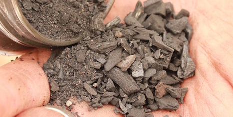 How to re-use old compost – ten useful ingredients | Gardening | Scoop.it