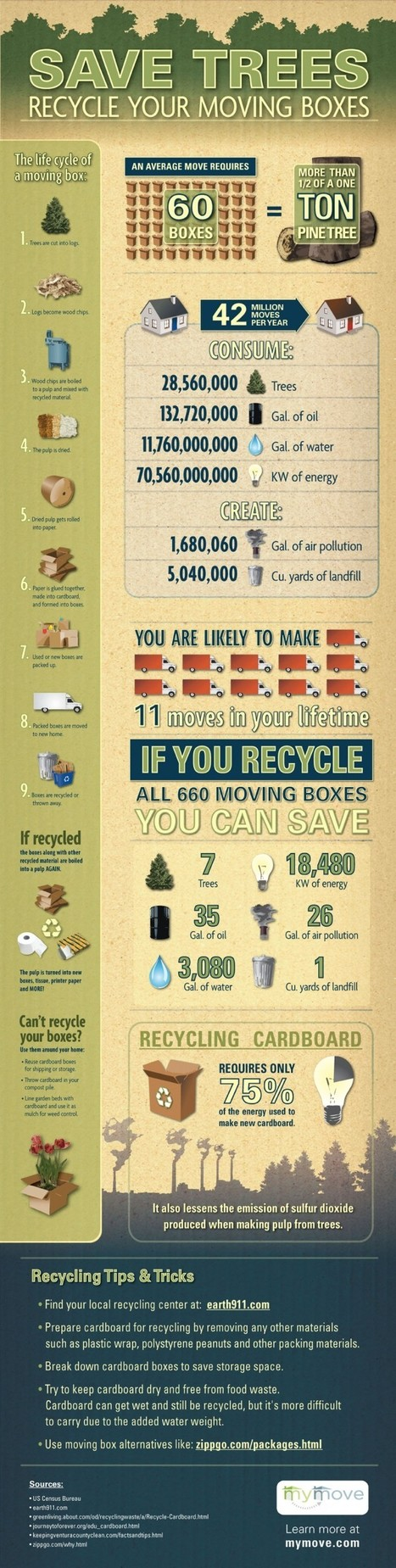 Environment - How to Save Trees by Recycling Unused Stuffs | All Infographics | L'isola del Bio | Scoop.it