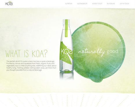 "21 Beautiful Examples of Using White in Web Design | Inspiration | ""#Google+, +1, Facebook, Twitter, Scoop, Foursquare, Empire Avenue, Klout and more"" 