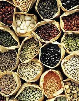 Para los agricultores sembrar su propia semilla estará prohibido o deberán pagar un impuesto | REDdeRED – Otro Mundo es Posible | Scoop.it