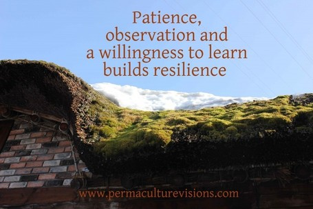 How To Build Resiliance | Permaculture Visions | Simple, sustainable living. | Scoop.it